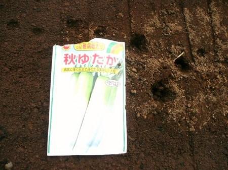 P1360887 - コピー.JPG